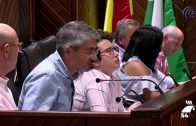 El Ayuntamiento de Pozoblanco despide octubre con el pleno ordinario