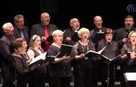 XIII Concierto de Primavera en el Teatro El Silo