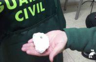 Dos detenidos en Villanueva de Córdoba por tráfico de drogas