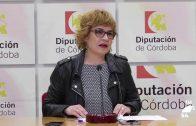 La Diputación presenta las convocatorias públicas de la Delegación de Cultura