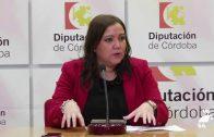 Presentado el  Programa Anual de Concertación y Empleo de la Diputación