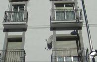 El Plan Alquila Joven del Ayuntamiento de Pozoblanco ya tiene beneficiarios