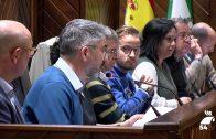 El Ayuntamiento celebra el pleno ordinario del mes de marzo