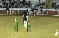 Emoción en la Plaza de Toros con el baile de los caballos andaluces