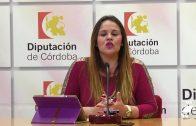 La Diputación presenta la II edición de los galardones del 'Día de la Provincia'