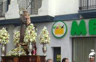 Pozoblanco al Día: Fiesta y Verbena de San Antonio
