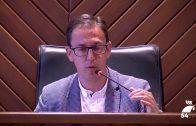 Programa Especial de Canal 54 Pozoblanco: Pleno Infantil 2018