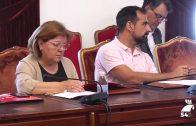 Sesión ordinaria del Consejo de Alcaldes y Alcaldesas de Córdoba
