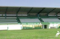 El césped del Polideportivo Municipal continúa sus trabajos de renovación