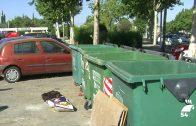 Terribles imágenes del abandono y muerte de unos cachorros en un contenedor de basura