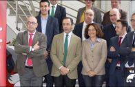 Pozoblanco al Día: Manifestación en Sevilla de la PCMyD