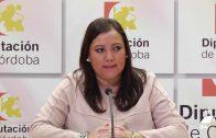 El Polígono Industrial Dehesa Boyal recibirá una ayuda de Diputación de Córdoba