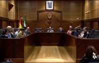El Ayuntamiento vivió el Pleno Ordinario del mes de marzo