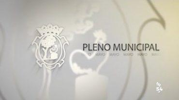 PLENO TELEMÁTICO ORDINARIO MAYO 2020
